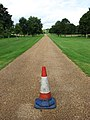 A lonely traffic cone - geograph.org.uk - 935137.jpg