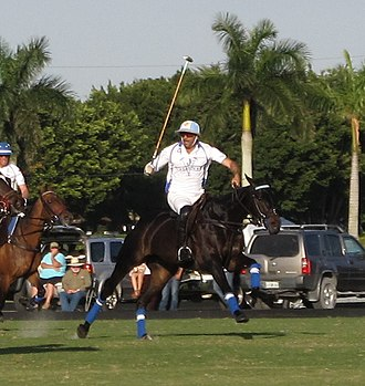 Adolfo Cambiaso - Cambiaso at the International Polo Club 2016 wearing his distinctive helmet colors of Argentina.