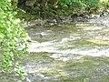 Afon Glaslyn - geograph.org.uk - 227777.jpg