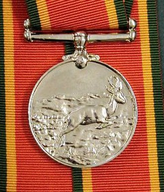 South African military decorations - Image: Africa Service Medal
