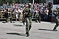 Airborne Troops Day 2013 (509-21).jpg