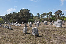 Parallel rows of upright, flat-sided stones set in a grassy field with trees in the background