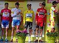 Alleur (Ans) - Tour de Wallonie, étape 5, 30 juillet 2014, arrivée (C91).JPG