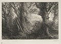 Alphonse Legros - In the Forest at Conteville - 1920.537 - Cleveland Museum of Art.jpg