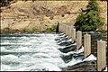 Am. River at Nimbus Dam 970 - panoramio.jpg