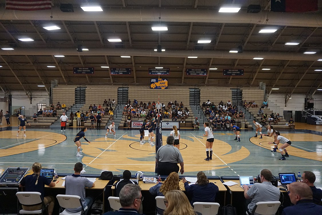 Angelo State vs. Texas A&M–Commerce volleyball 2017 15.jpg