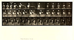 Animal locomotion. Plate 404 (Boston Public Library).jpg