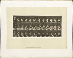 Animal locomotion. Plate 418 (Boston Public Library).jpg