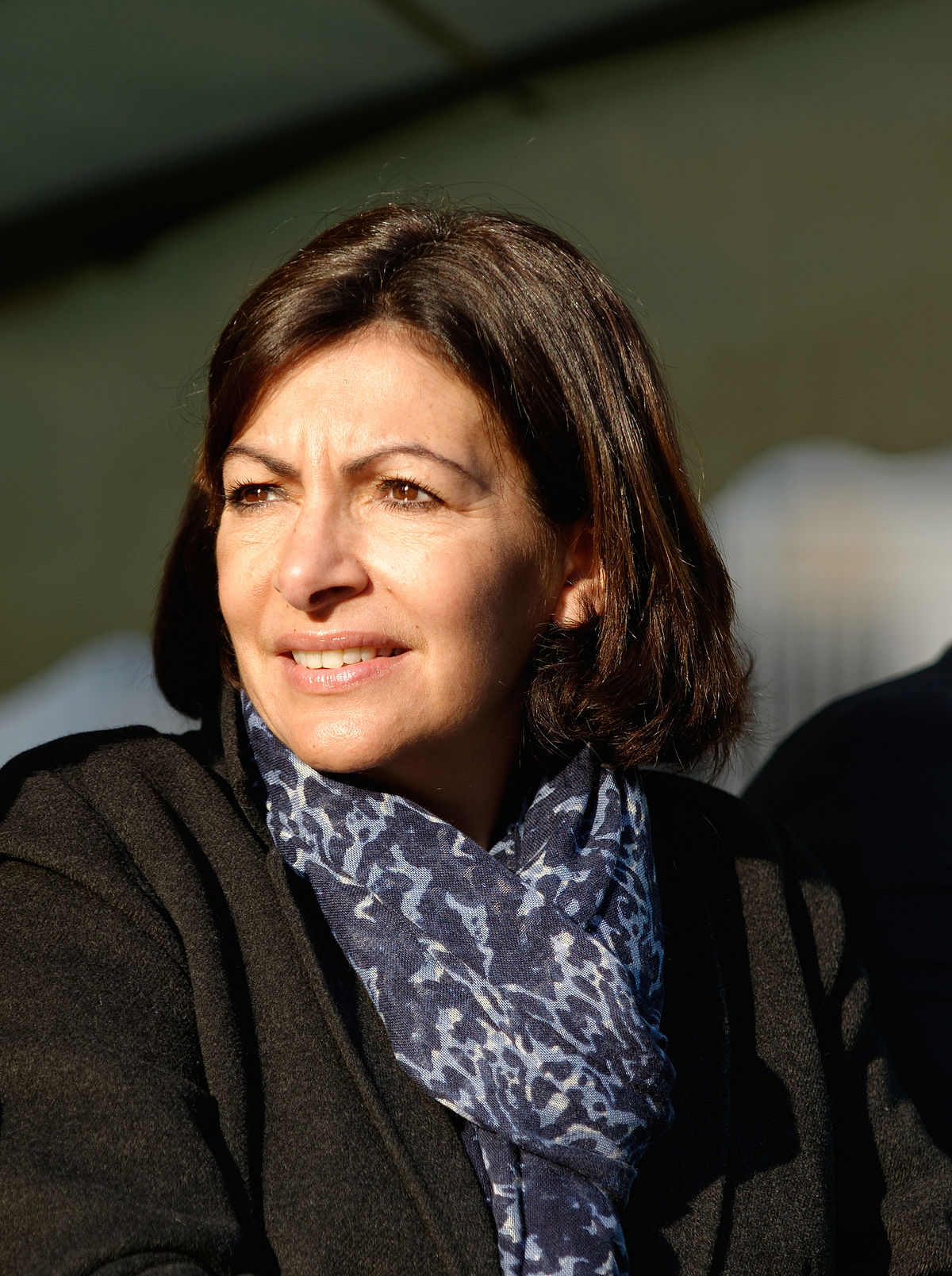 anne hidalgo wikiquote le recueil de citations libres. Black Bedroom Furniture Sets. Home Design Ideas