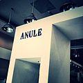 Anule logo store.jpg