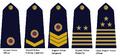 Apfs rank markingsg.PNG
