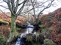 Apperley Burn - geograph.org.uk - 620342.jpg