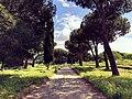 Appia Antica Road.jpg
