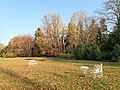 Arboretum Przelewice 2018-11-07 4218.jpg