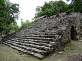 Archaeological Site - Coba - Quintana Roo - Mexico - 01 (15132224724).jpg