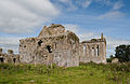 Athassel Priory St. Edmund Chapter House and Choir SE 2012 09 05.jpg