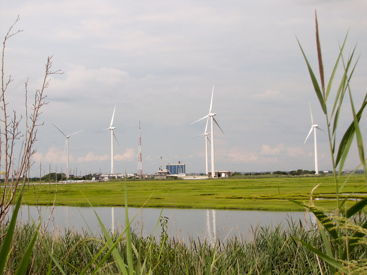 wind farm General motors will buy 100 percent of the power generated by a 100 megawatt wind farm in northwest ohio construction has been under way for some time and now scheduled to be complete by fall gm .
