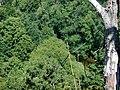Ausblick vom Kocher-Jagst-Radweg auf die Jagst im tiefen Tal - panoramio.jpg
