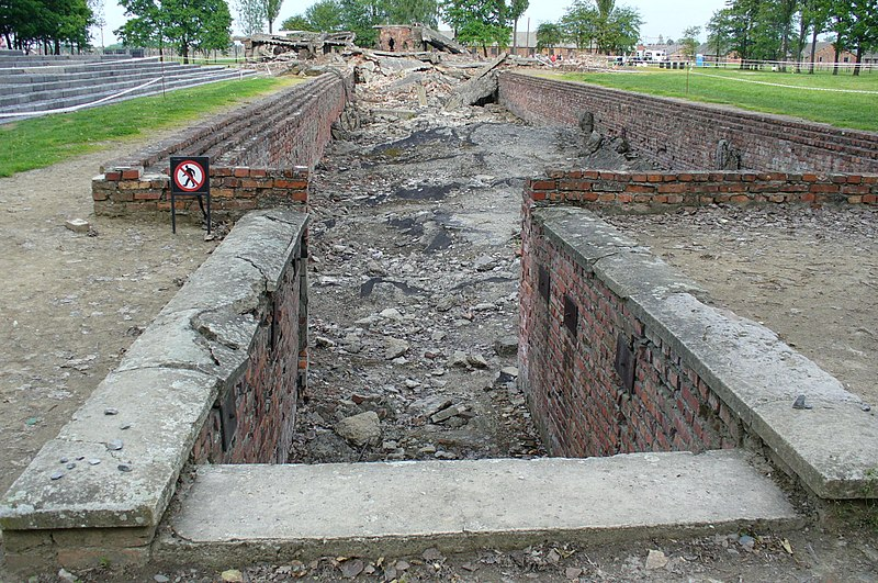 File:Aushwitz- hundreds of thousands walked down these steps.JPG