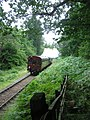 Autotrain to Whitecroft steaming through trees - August 2011 - panoramio.jpg
