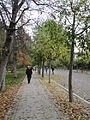 Autumn promenade (6382401763).jpg