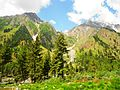 BLISS at Naltar Valley.jpg