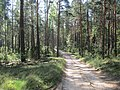 Balakhninsky District, Nizhny Novgorod Oblast, Russia - panoramio (11).jpg