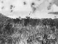 Bantam Under Attack-28 March 1943.png
