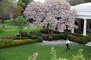 Barack Obama in the Rose Garden of the White House.jpg