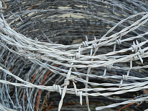 Roll of barbed wire on a farm