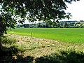 Barn Elms Farmland - geograph.org.uk - 21132.jpg