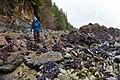 Barnacle Path (8542838291).jpg