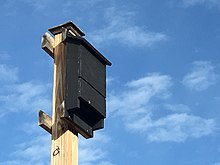 The image is of a wooden bat house