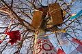 Baumbesetzung Buche RobinWood 1.jpg