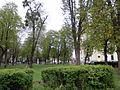 Bazilika Šaštín-Stráže 17 Slovakia40.jpg