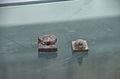 Bejing China printing museum.Daihou bronze seals.jpg