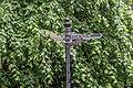 Belfast Botanic Gardens - panoramio (6).jpg