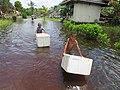 Bermain banjir.jpg