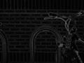 Bikesgray-scharr.png