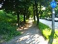 Bikeway in torun poland.jpg