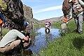 Biologists track frogs in Eastern Oregon desert (18313526020).jpg