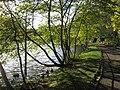 Blackford Pond, Edinburgh - geograph.org.uk - 596388.jpg