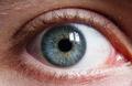 Blue Green Eye.png