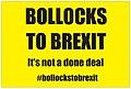 Bollocks to Brexit.jpeg