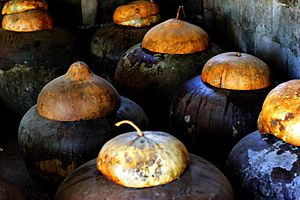 Bagoong terong - Bagoong fermenting in burnay jars in the province of Ilocos Norte, Philippines