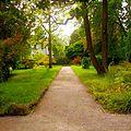 Botanical Garden University Heidelberg 1.JPG