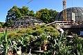 Botanischer Garten der Universität Zürich (Erneuerung 2011-2012) 2011-10-11 14-40-36.JPG