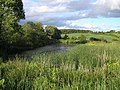 Bowden Common, Curling pond - geograph.org.uk - 1361474.jpg