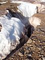 Brøggerbreen 16.JPG