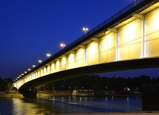 Branko's Bridge in Belgrade by night.JPG